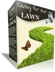 Caring For Your Lawn
