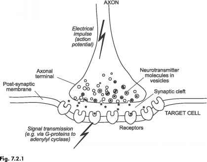 Circuits The Enteric Nervous System